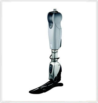 Prosthesis Liner